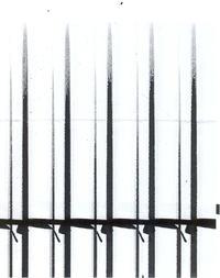 Gestetner c2800 brudzi wydruk (skan)