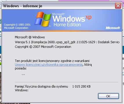 Błąd Windows Update (WinXP Home)