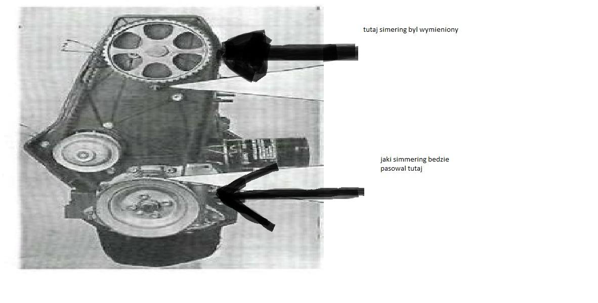 seat 1.4 8v AEX - wyciek oleju od strony rozrzadu