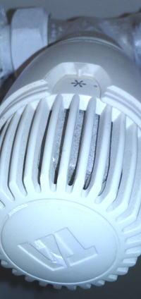 glowica termostatyczna TA - jak kupic
