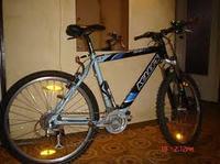 Zakup roweru pod konkretne wymagania, las, asfalt, ścieżki rowerowe, jaki?