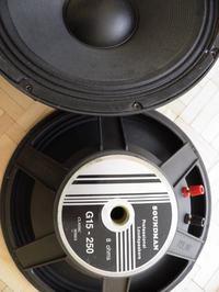 Obudowa do Głośników Soundmann G 15 250