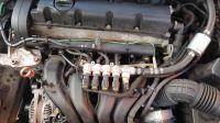 Martwy włącznik LPG, auto nie odpala... Peugeot 406, 2006, instalacja gazowa BRC