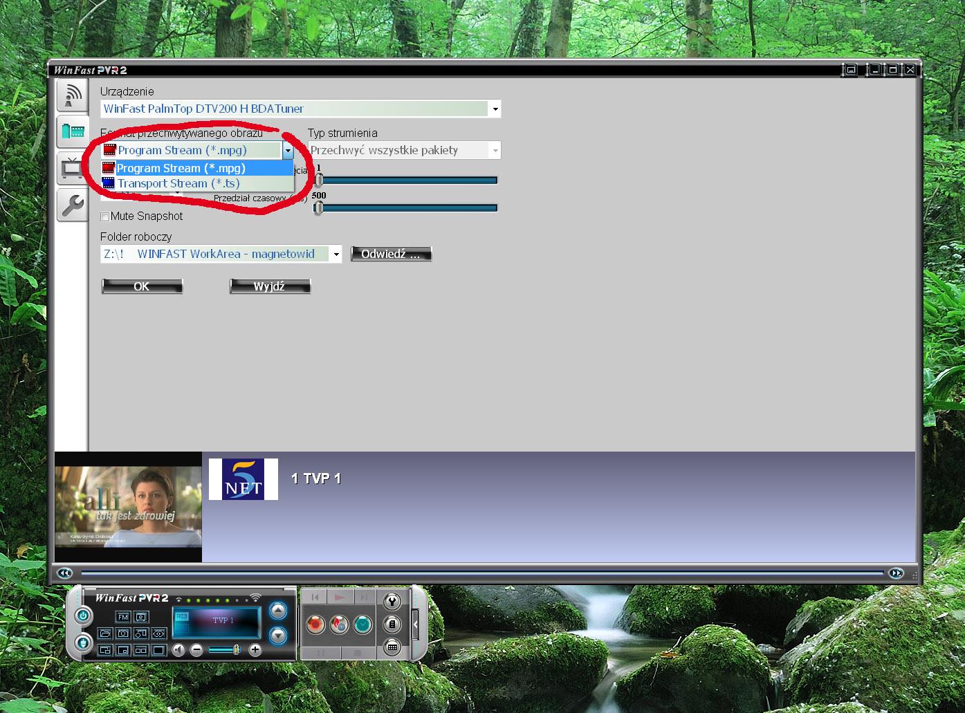 Leadtek WinFast PalmTop DTV200 H  z�e zgrywaniem z sygna�u DVB-T w PVR2 Windows.
