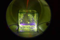 Akwarium pełne elektronów, czyli siarczek cynku, wysokie napięcie i próżnia.