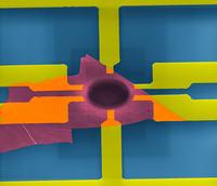 Mikrorezonatory z materiałów dwuwymiarowych opartych o fosfor
