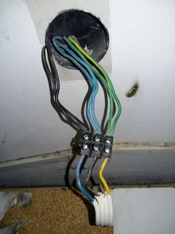 Montaż podwójnego gniazdka elektrycznego - pytanie
