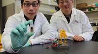 Biobaterie wytwarzaj�ce energi� elektryczn� z cukru