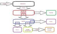 Drukarka sieciowa niewidoczna za routerem Netgear N150