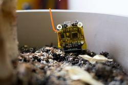 Wireless soil moisture sensors