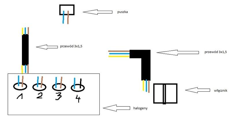 Schemat pod��czenia halogen�w