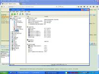 Asus p5b - Windows xp nie widzi chyba wszystkich procesorów.