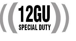 Nadstawki 100 W rms 101dB ,beyma 12GU + GDWT 9/100 FP