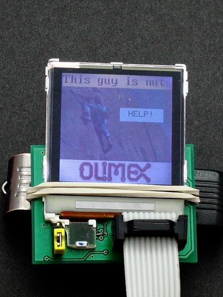 [Sprzedam] petit-LCD - uk�ad do LCD Nokia 6100, 6610 + r�ne opcje sprzeda�y