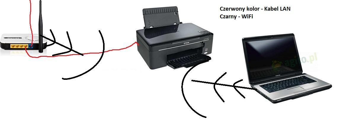 Epson SX130 - Jak pod��czy� do sieci (LAN)