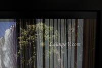 LCD DELL 2209waf Wygaszanie ekranu tylko na jasnych obrazach