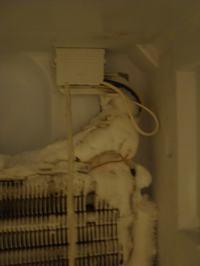 indesit 34nfnxd - Chłodziarka nie chłodzi