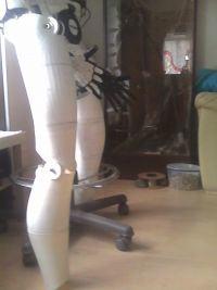 Damian - Robot humanoidalny
