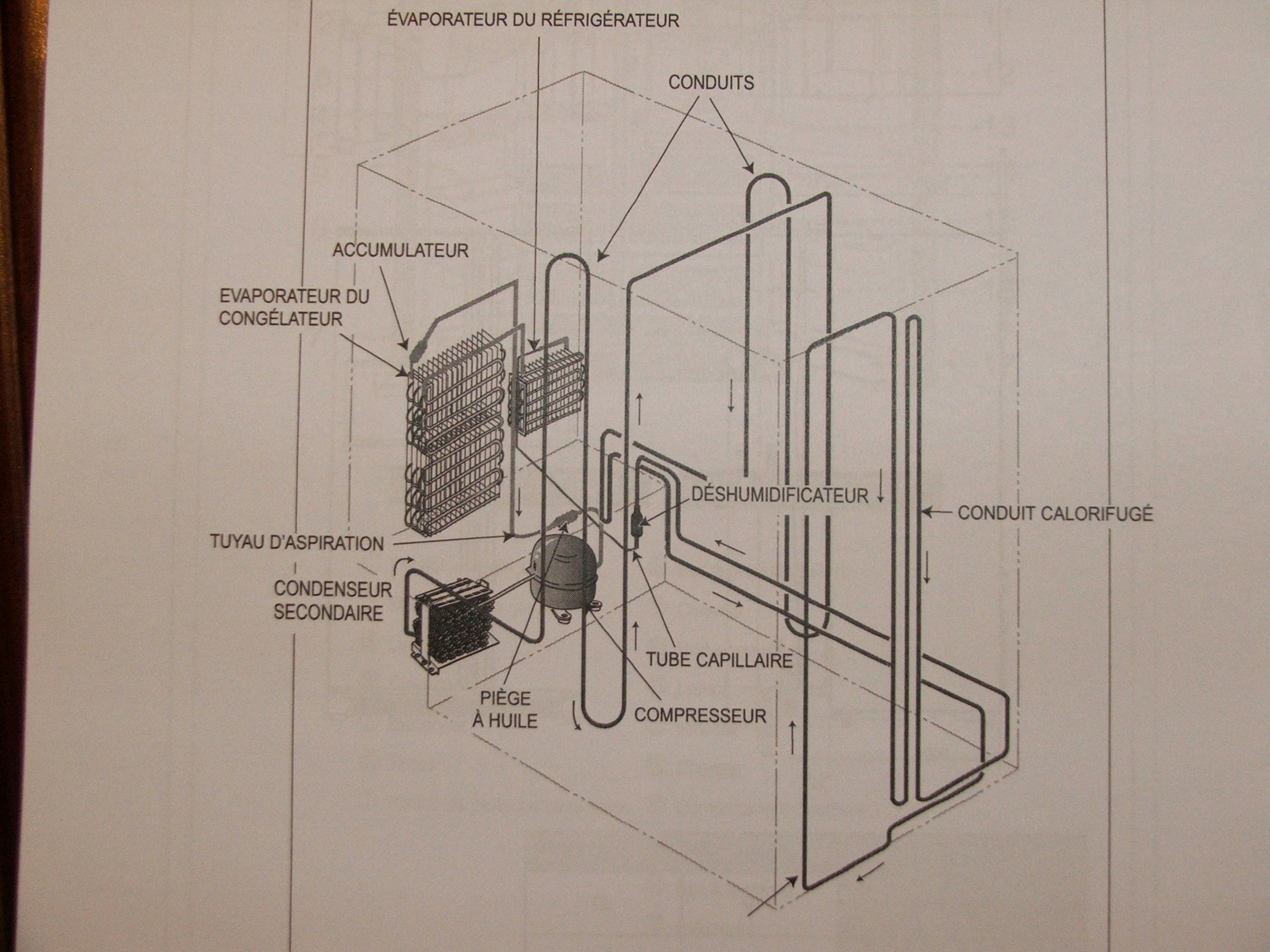 lod�wka Samsung RSH1 KBRS niestabilna temeratura