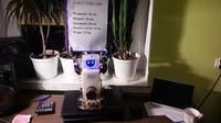 Robot pół humanoidalny Stef.One