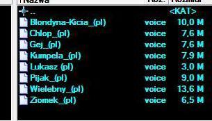 czesio voice automapa