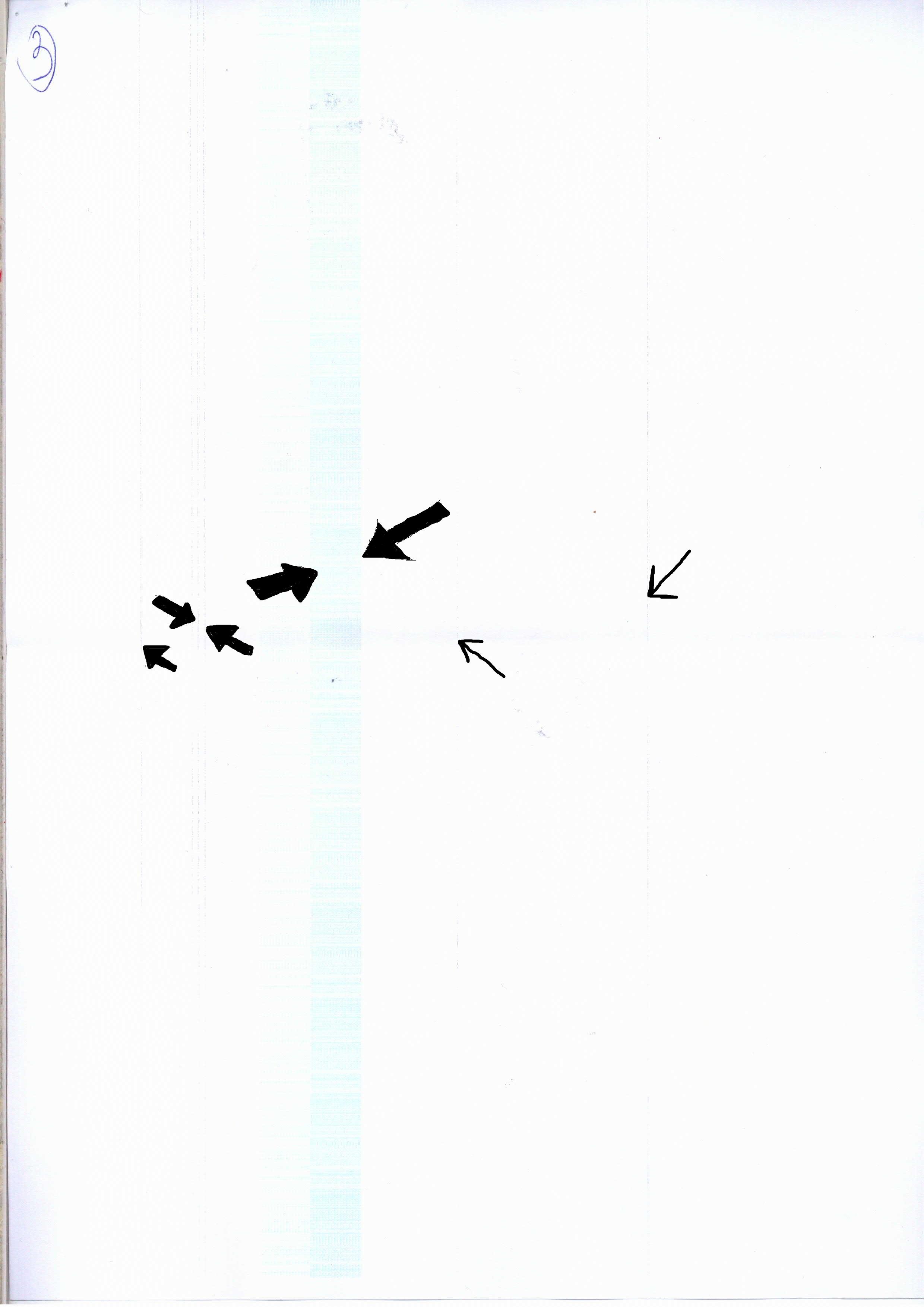 BIZHUB c253 - Brudzi - niebieski pas i czarne paski