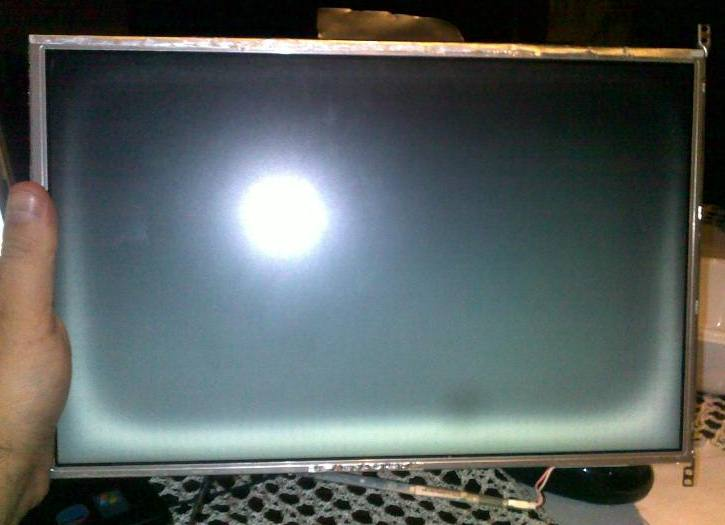 laptop hp NC6400 brak obrazu