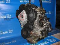 vw polo 1.9D-AEF - Czy napinacz rozrz�du w tym silniku powinien by� ods�oni�ty?