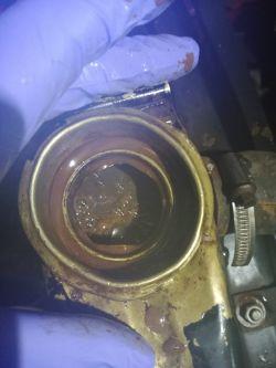 Olej w układzie chłodzenia - Zetor 7211