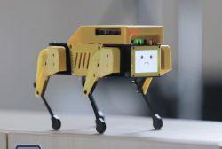 Mini Pupper - robot z RPi 4 do nauki ROS, SLAM, nawigacji i widzenia maszynowego
