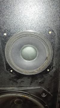 Kolumny Skart 90 regeneracja, jakie głośniki