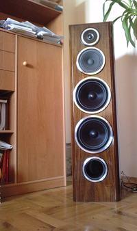 Kolumny głośnikowe na Tonsilach i STX-ie