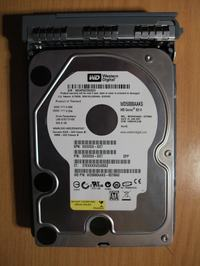 Odzyskiwanie danych z NAS Server Raid 1 WD5000AAKS
