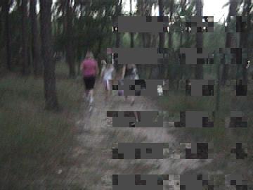 Kamera Sony DCR TRV245E - piksele na obrazie