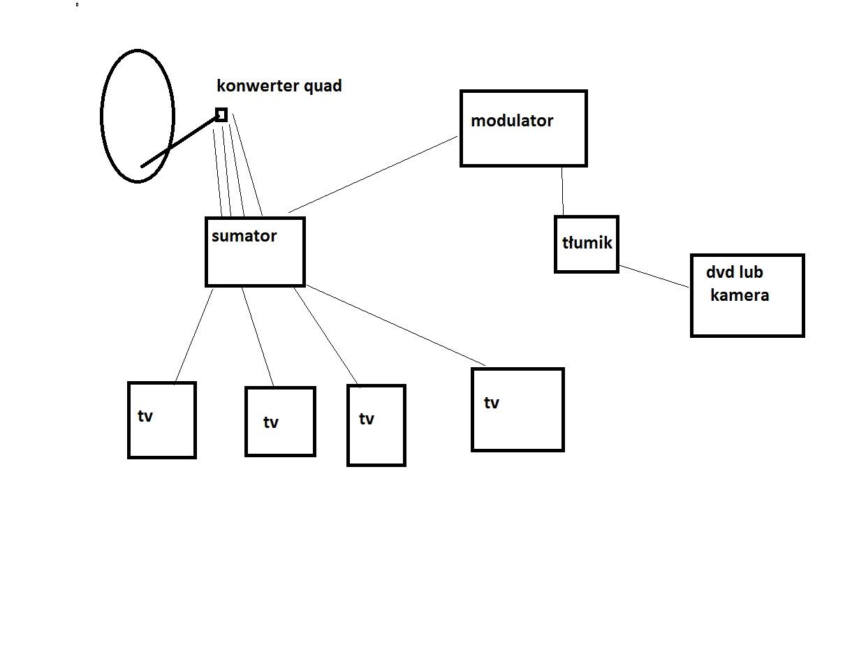 Obraz z modulatora �nie�y
