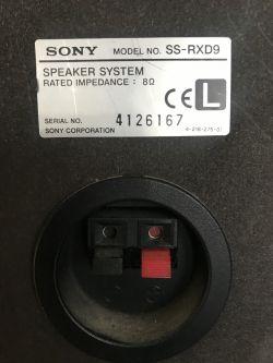 Sony SS RXD9 jaki wzmacniacz.