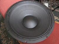 Wharfedale EVP15PSB wymiana głośnika