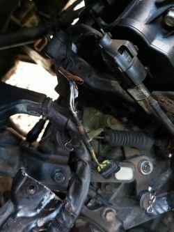 Hyundai Santa Fe (CM) 2.2 crdi - Jakie powinno być napięcie na złączu do czujnik