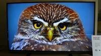 Sharp prezentuje nowe telewizory na rok 2014.