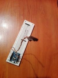 Termometr z zapisem danych. Esp8266