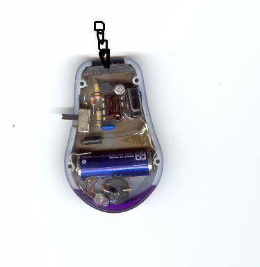 Wędkarski sygnalizator brań
