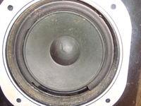 Regeneracja membran czy kupno nowych głośników?