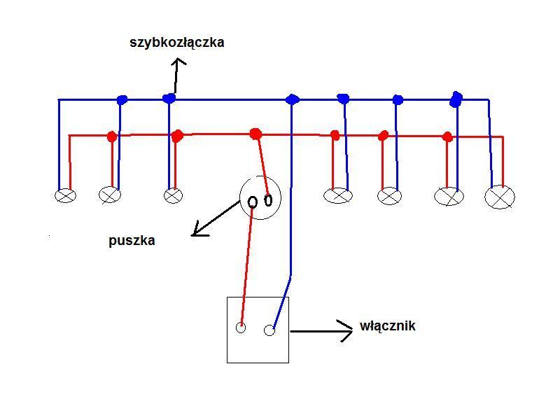 Czy schemat pod��czenia halogen�w jest poprawny ?