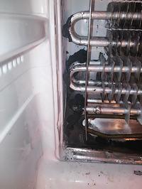 LG GC399 - Alien w lodówce, czyli jak udrożnić zatkany odpływ w NoFrost