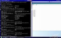 Sieć niezidentyfikowana / Łączność ograniczona / Vista