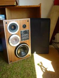 Dynamic Speaker AX10 - naprawa okleiny.
