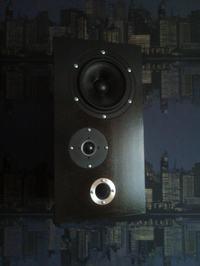 Trapezowate monitory 2-drożne