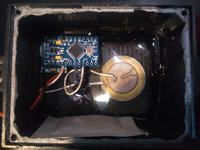 Samochodowy odstraszacz kun na Arduino Pro Mini