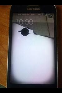Samsung Galaxy Core Prime - Uszkodzony LCD?