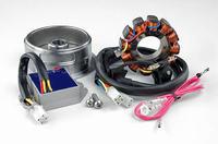 Honda CRF 450X 2007r - Uzwojenia stojana, regulator i układ ładowania